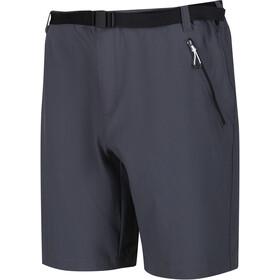 Regatta Xert III Stretch Shorts Men, szary